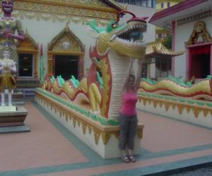 zuzka_musilova_na_cestach_wat_-chaiya_-mangkalaram_-temple_-penang-_1620
